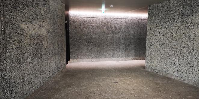 Clinicum Alpinum, Liechtenstein
